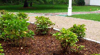 Miami Mulch Landscape