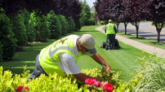 Let the experts at Vinehill Lawn Care work on your lawn